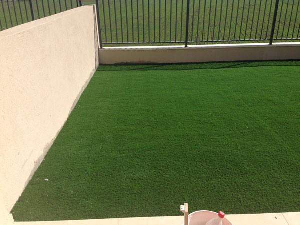 דשא סיננטי במרכז